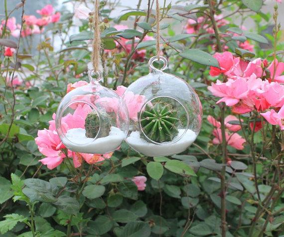 Hanging Glass Vase Hydroponic Flower Vase Glass Vases Glass Globe