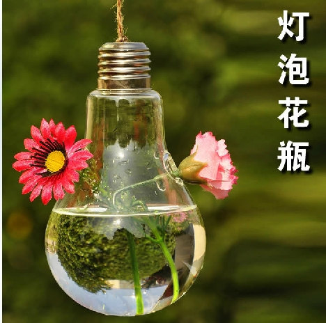 Glass Homre Decoration Hanging Hydroponic Vase Home