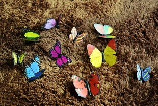 Acrylic Butterfly (Assorted Sizes And Colors)